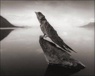 il-lago-natron