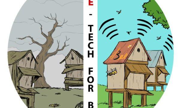 Un modo di proteggere le api: l'alveare hi-tech