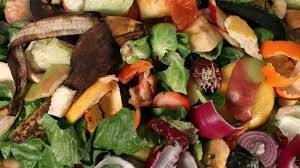 Bio-plastica dai rifiuti organici, un altro passo verso il futuro.